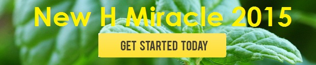 new h miracle 2015